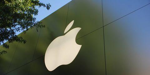 logo, granny smith, fruit, apple, malus, graphics,