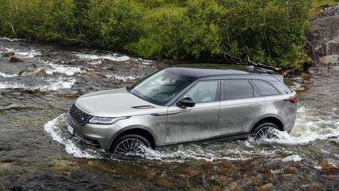the velar can also swim, sort of