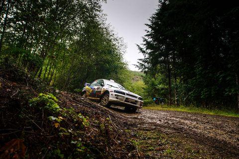 Regularity rally, World rally championship, Vehicle, Rallying, Off-roading, Off-road vehicle, Tree, Motorsport, Racing, Car,
