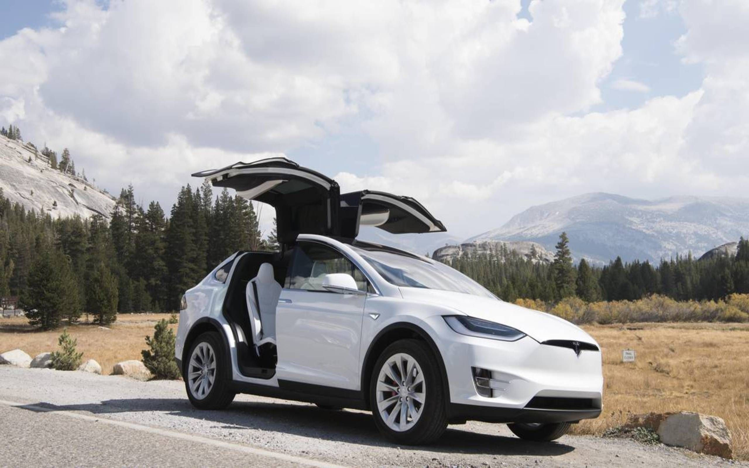Model X Owner Trapped By Falcon Wing Doors In Crash But Is Tesla To Blame
