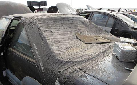 It may even be rainproof.