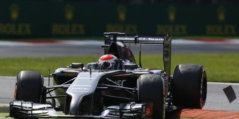 Driver Adrian Sutil is hoping the Sauber F1 team can afford to make it back to the series in 2015.