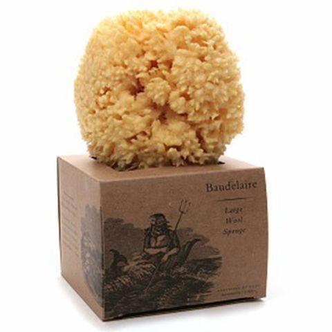 Baudelaire Sponge Wool Boxed
