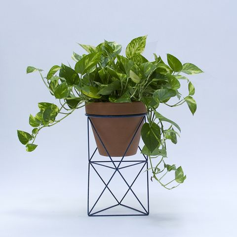 11 Best Modern Indoor Planters In 2018 Planters And