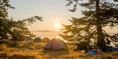 moonlight app camping planning