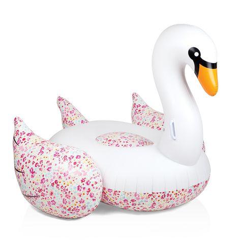 Vertebrate, Toy, White, Ducks, geese and swans, Pink, Bird, Waterfowl, Water bird, Swan, Beak,