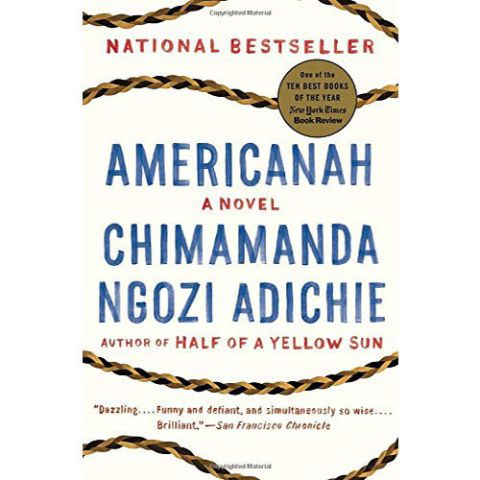 Chimamanda Ngozi Adichie's novel Americanah that touches on feminism.