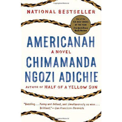 Chimamanda Ngozi Adichie's novel Americanah that touches on feminism.