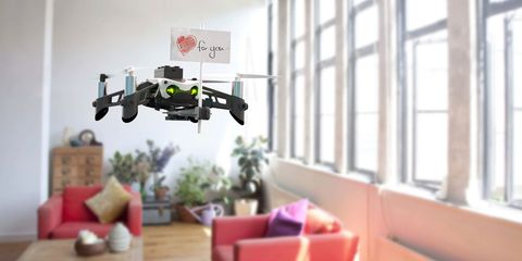 Parrot Drone shopping guide