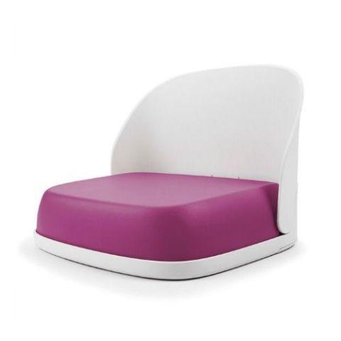 Purple Booster Seat