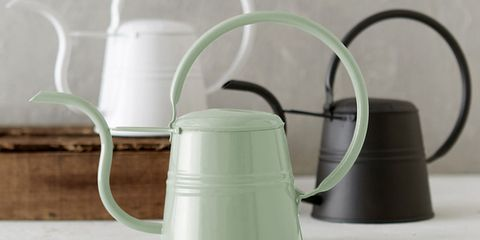 10 Watering Cans For Giving Your Greenery Some Tlc
