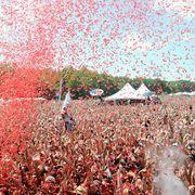 Firefly Music Festival — Dover, Delaware, USA