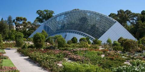 best botanical gardens - Adelaide Botanic Garden