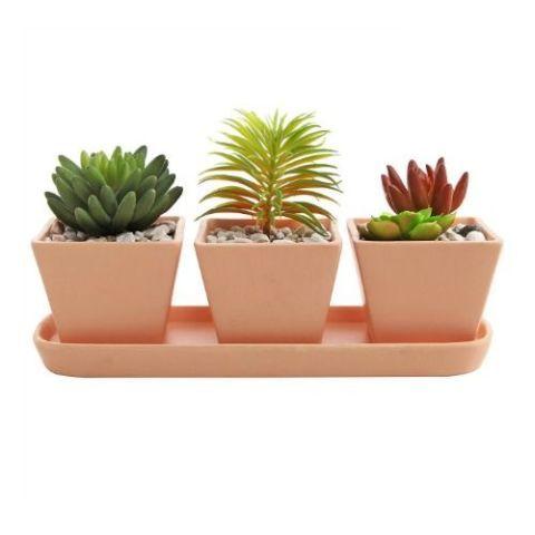 Succulents Terracotta Pots DIY
