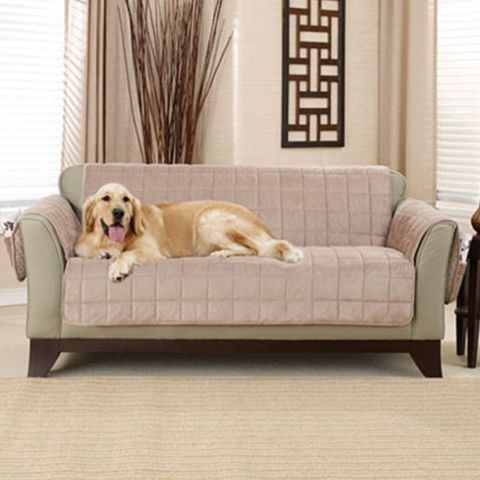 Sure Fit Deep Pile Polyester Velvet with Non-Skid Paw Print Pet Furniture Slipcover