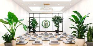 MNDFL Meditation