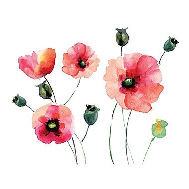 WallPops! Watercolor Poppies Wall Decal
