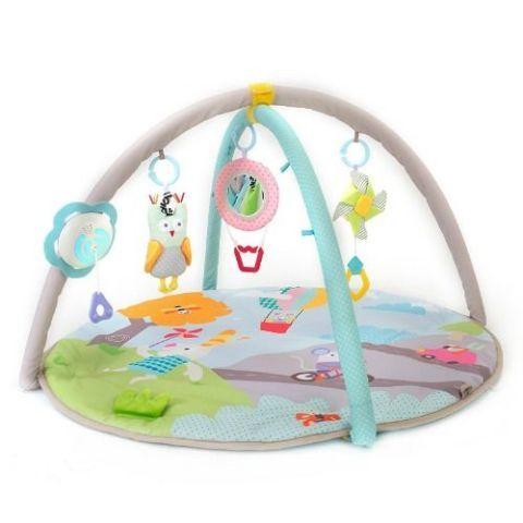 Taf Toys Baby Play Gym