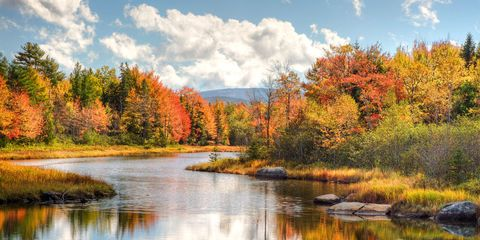 Places To See Fall Foliage