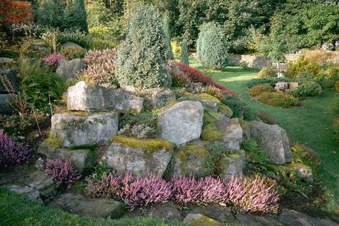 Rock Garden Ideas To Build Your Own In 2018 Step By Step Guide To Landscaping With Rocks