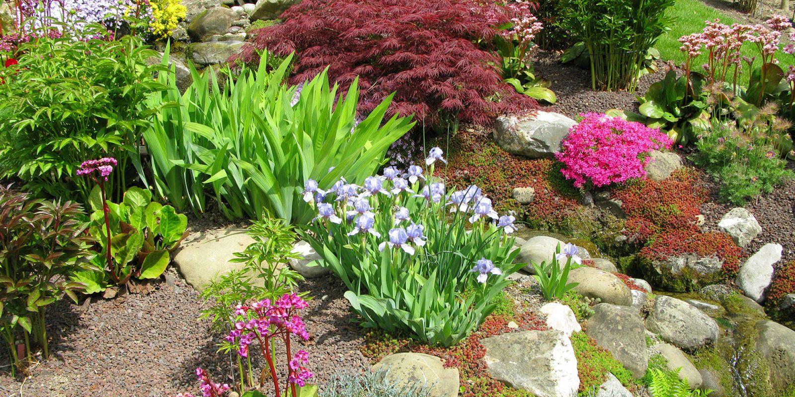 How To Make A Rock Garden Design Inspirations