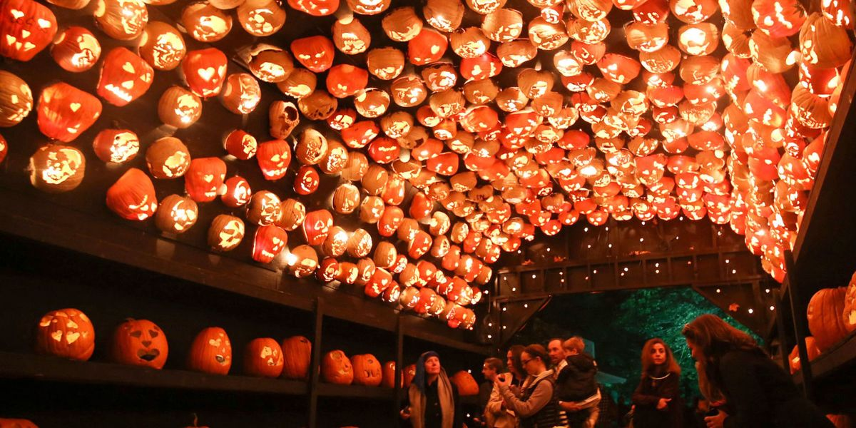 Everything To Know About The Great Jack O Lantern Blaze In