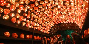the great jack o'lantern blaze new york