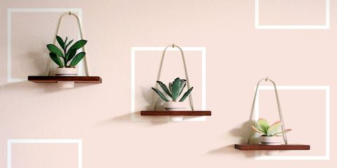 wall-planters