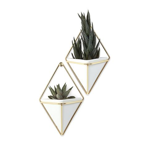 10 Best Wall Planters For Your Living Room In 2018
