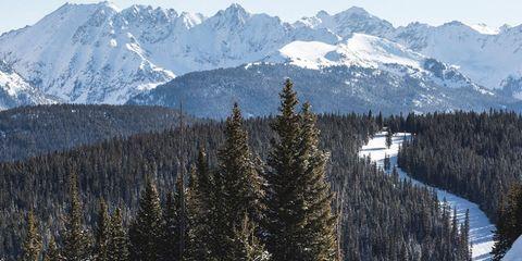 Vail Mountain Resort