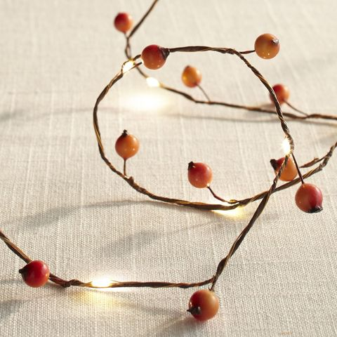 Pier 1 Imports Harvest Berry LED Glimmer Strings