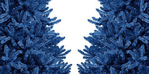 blue christmas trees - Christmas Blue