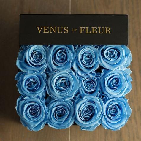 Venus et Fleur Small Square