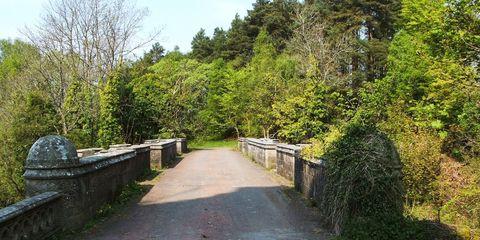 The Overtoun Bridge