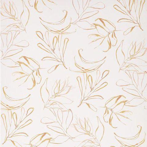 Chasing Paper x Kelly Ventura Botany