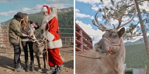 Santa Claus lives on a reindeer farm, Laughing Valley Ranch, in Colorado