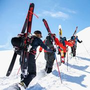 ski poles
