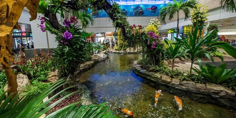 Singapore Changi International Airport (SIN)