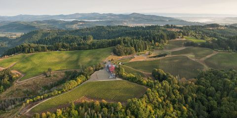 Portland wineries