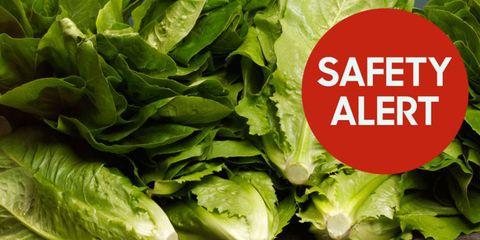 romaine lettuce safety alert