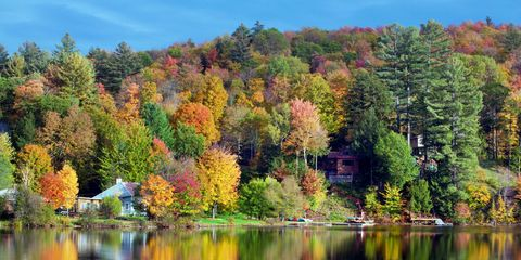 Manchester, Vermont fall foliage