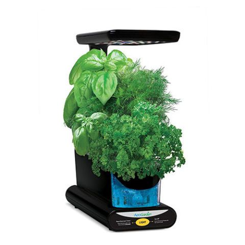 Miracle-Gro AeroGarden Sprout LED Gourmet Herb Seed Pod Kit