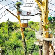 Cypress Valley Canopy Tours has a treehouse hotel near Austin, Texas