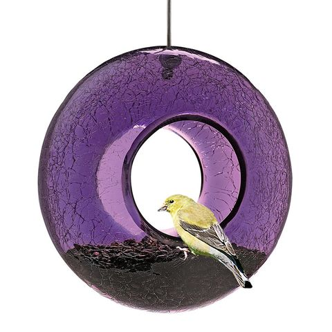 Gardener's Moon Bird Feeder