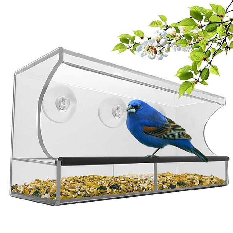 Nature's Hangout Window Bird Feeder