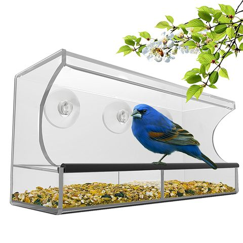 Nature's Hangout Window Bird Feeder