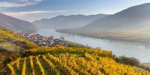 Danube River Cruise — Europe