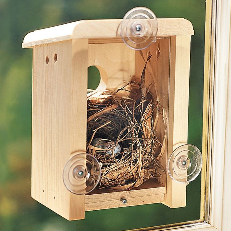 Gardener's Window Nest Box