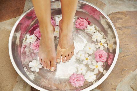 Leg, Toe, Human leg, Petal, Pink, Flower, Organ, Nail, Foot, Peach,
