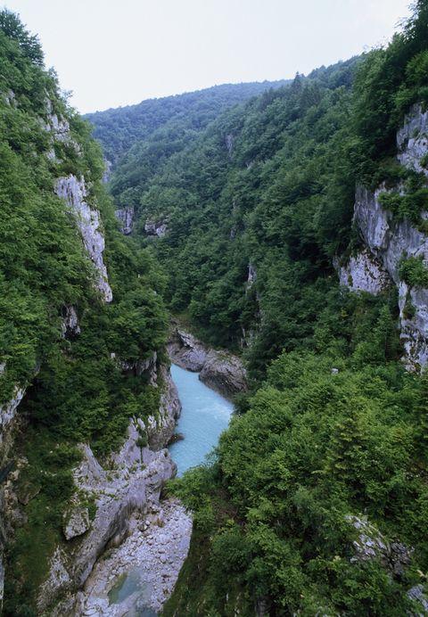 Vegetation, Nature, Mountainous landforms, Valley, Natural landscape, Highland, Stream, Nature reserve, Mountain, Watercourse,